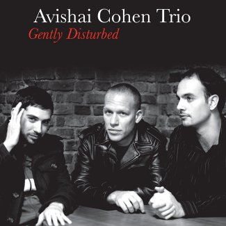 Gently Disturbed - Avishai Cohen